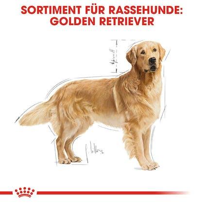 RC-BHN-GoldenRetriever-Trockennahrung_Sortiment_DE