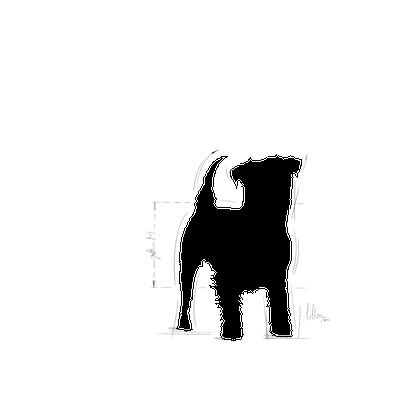 JACK-AD-ILLUSTR-FACING-BHN17