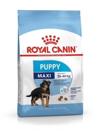 Maxi Puppy