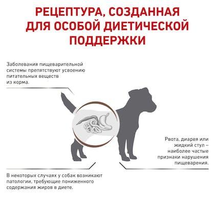 RC-VET-DRY-DogGastroLFSD-BrandFlagship_rus2