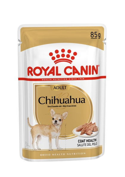 BREED-18_CHIHUAHUA_S_POUCH_85