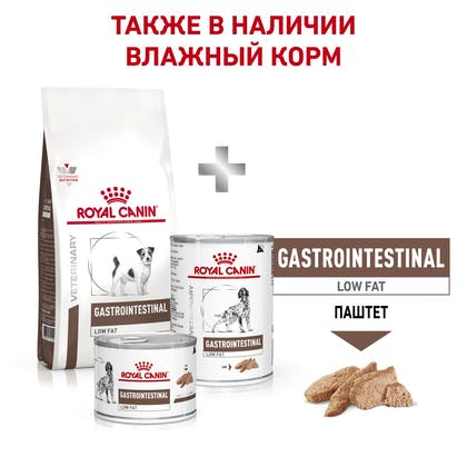 RC-VET-DRY-DogGastroLFSD-BrandFlagship_rus7