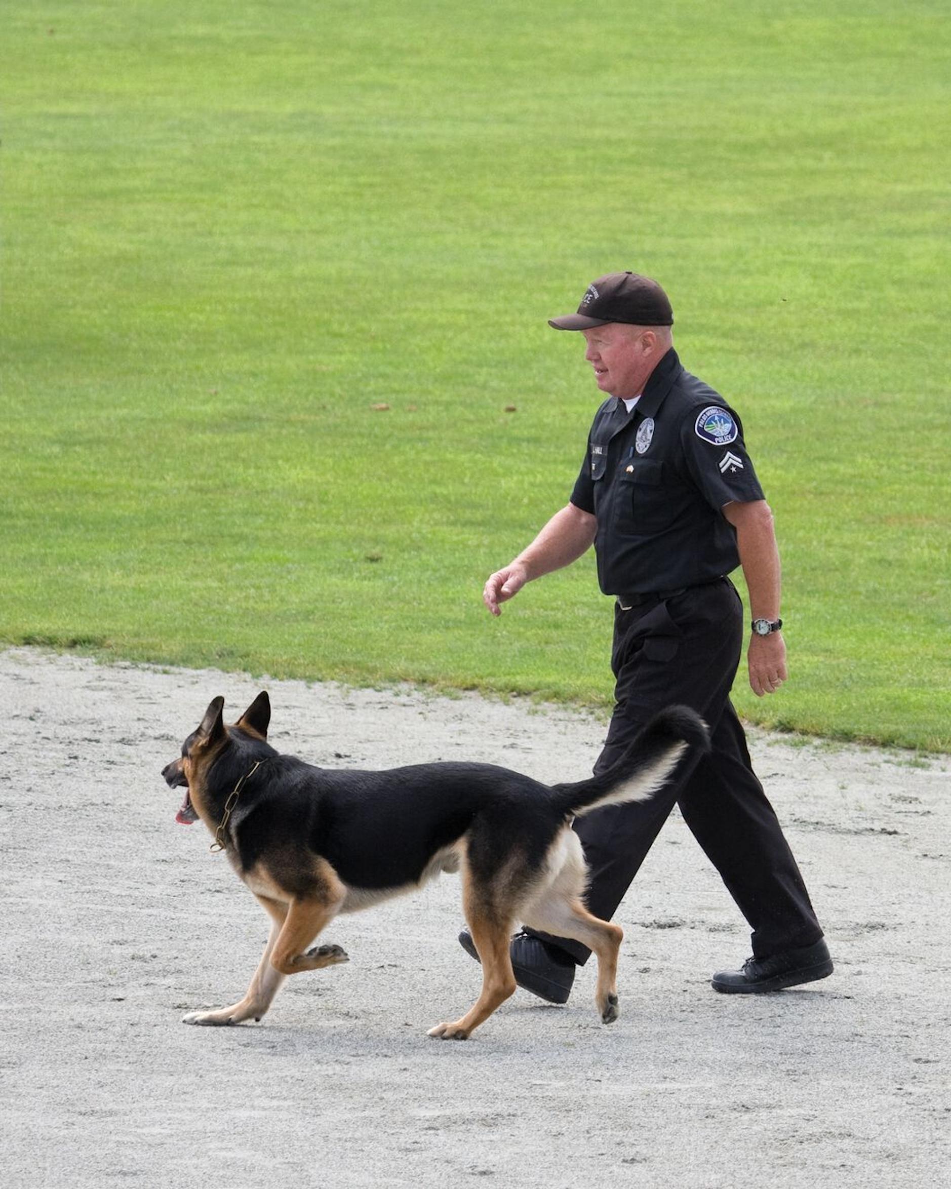 Polizeihunde führen Aktivitäten niedriger bis moderater Intensität über eine längere Dauer aus und sollten daher eine Nahrung mit verdaulichen Kohlenhydraten und Fett als Energiequellen erhalten.