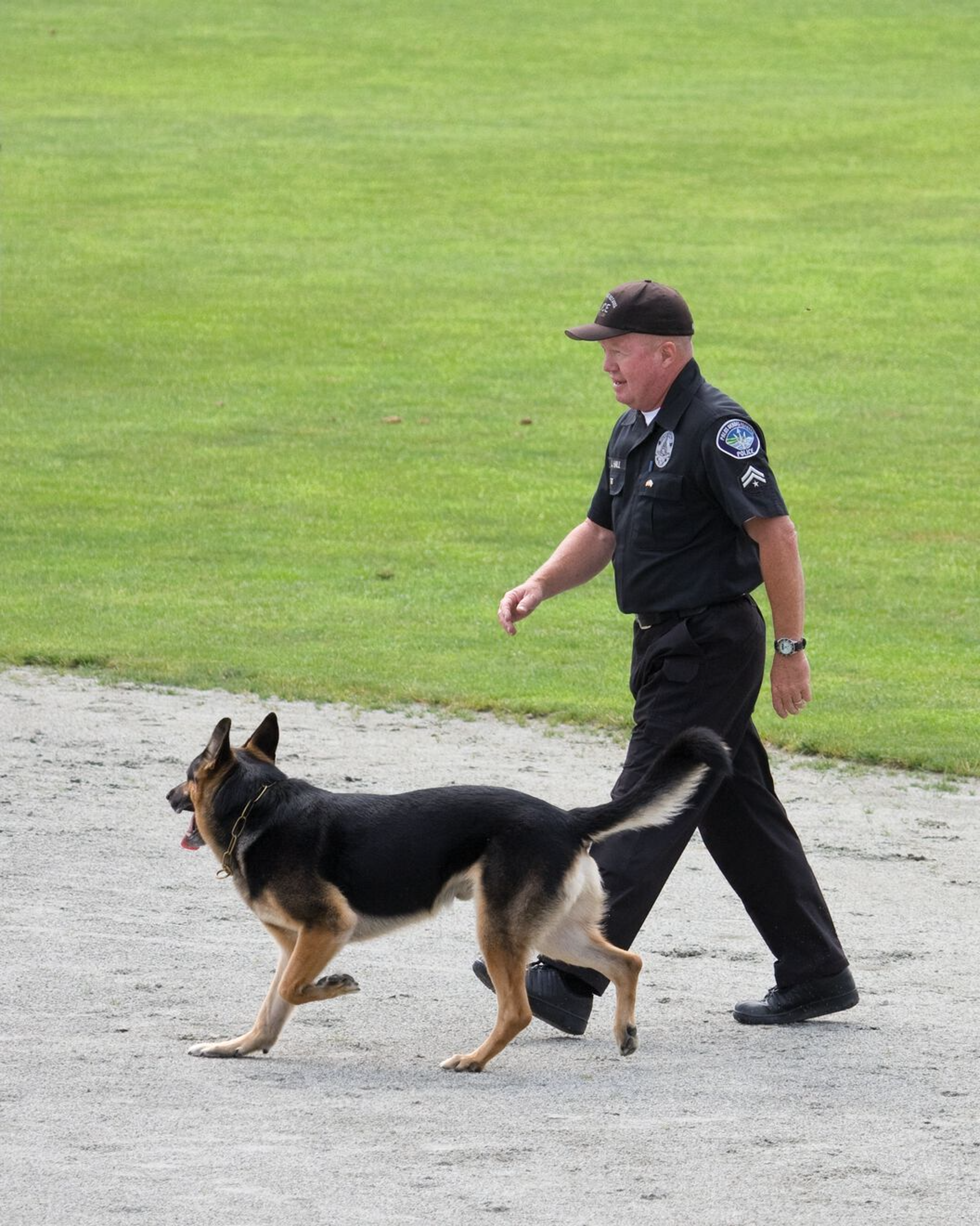 Police dogs are subject to low or moderate levels of exercise for a prolonged period of time, and should be fed a diet with both digestible carbohydrates and fat as the energy source.