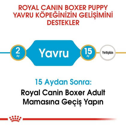 Royal Canin Boxer Puppy Yavru Köpek Maması 4