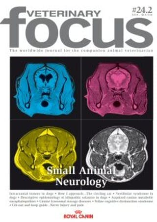 Small Animal Neurology