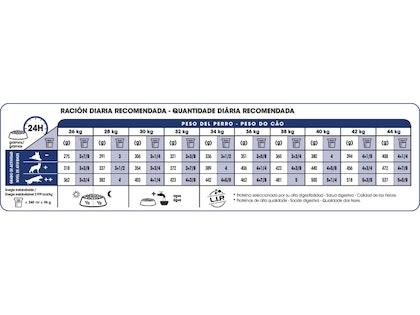 AR-L-Tabla-Racionamiento-Maxi-Adult-Size-Health-Nutrition-Seco