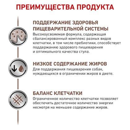 RC-VET-DRY-DogGastroLFSD-BrandFlagship_rus4