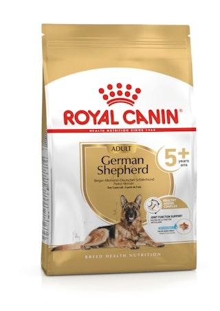 German Shepherd 5+