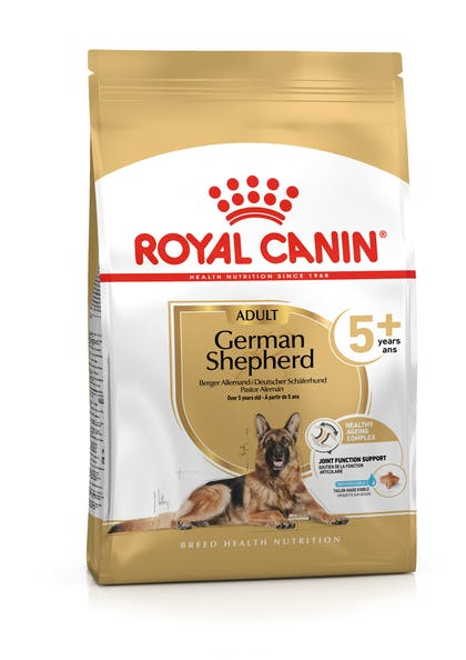 GERMAN SHEPHERD 5+-PACKSHOT-B1-BHN20