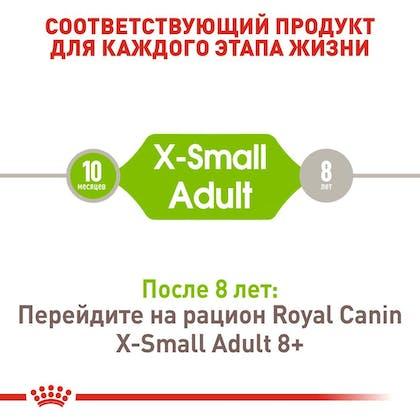 RC-SHN-AdultXSmall_2-RU.jpg