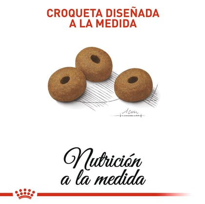 3 - WEIGHT CARE COLOMBIA