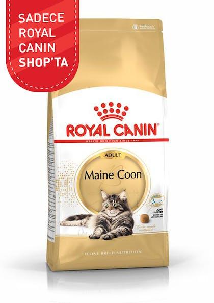 Royal Canin Kedi Maması Maine Coon Adult