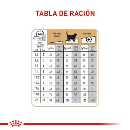 RAGDOLL ADULT COLOMBIA 5