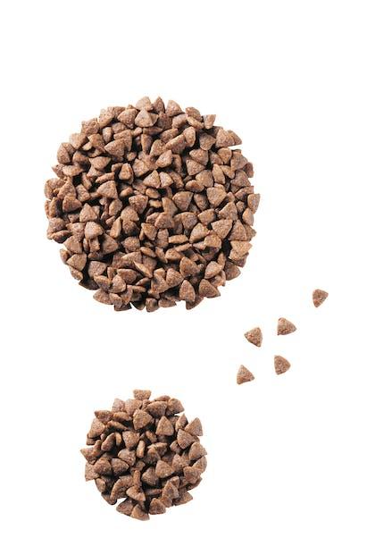 VCN 2011 - Kibbles and wet diet - JU-SD-PED-VCND-CROC