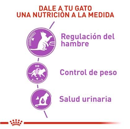 2 - APPETITE CONTROL STERILISED COLOMBIA
