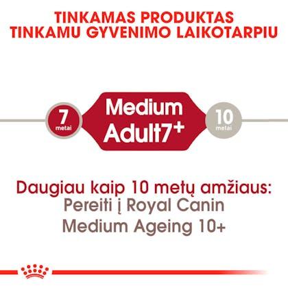 RC-SHN-AdultMedium7-CV-EretailKit-1-lt_LT
