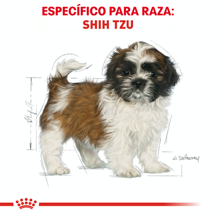 RC-BHN-PuppyShihTzu-CM-EretailKit-4