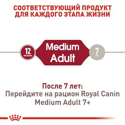 RC-SHN-AdultMedium_2-RU.jpg