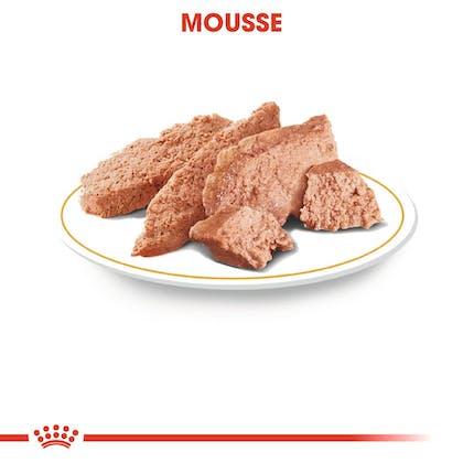 RC-BHN-Wet-Poodle-Feuchtnahrung_Mousse_DE