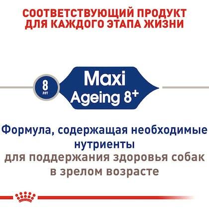 RC-SHN-AgeingMaxi8_2-RU.jpg