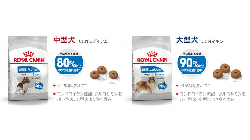 402-japan-local-ca-ccn-renewal-mideum-maxi-light-weight-care