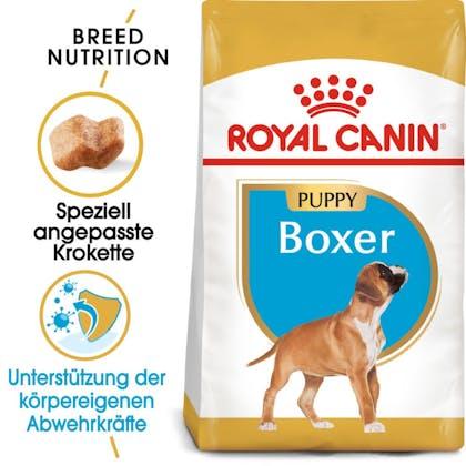 RC-BHN-PuppyBoxer-Trockennahrung_Hero-Image_DE