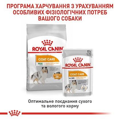 RC-CCN-CoatBeautyMini-5