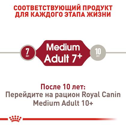 RC-SHN-AdultMedium7_2-RU.jpg