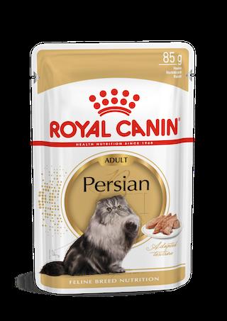 Persian