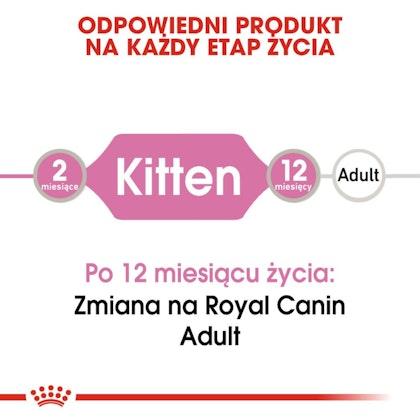RC-FHN-KittenInstinctiveLoaf-CV-Eretailkit-1-pl_PL
