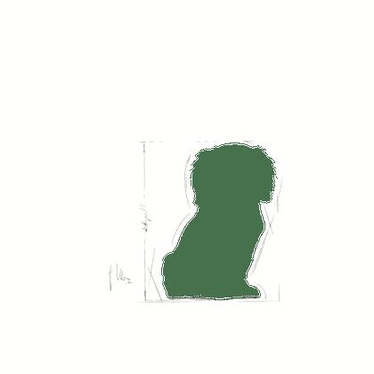 CAV-JU-ILLUSTR-FACING-BHN17