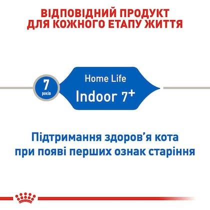 RC-FHN-Indoor7_2-UA.jpg