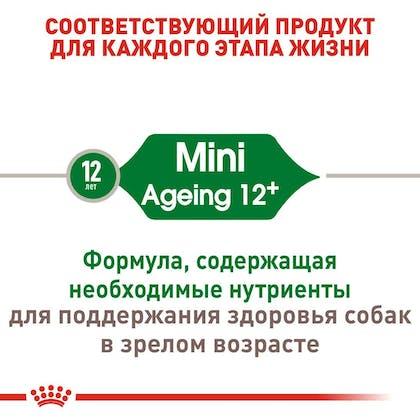 RC-SHN-AgeingMini12_2-RU.jpg