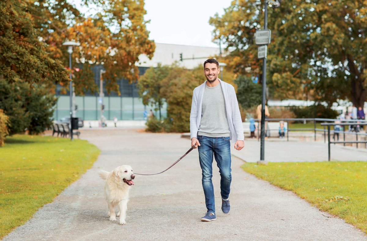 Local access to suitable places to walk encourages dog walking and emphasizes the importance in providing areas where people can be physically active.