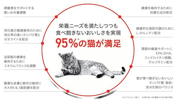 406-japan-local-ca-fhn-wet-detail