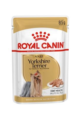 Yorkshire Terrier Adult WET