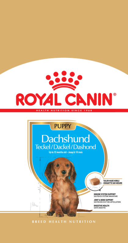 PU_DACHSHUND_FACING_BHN18_LINE