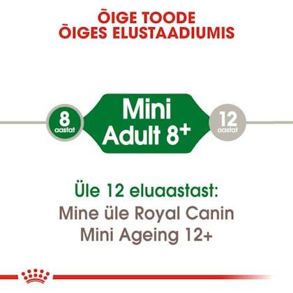 RC-SHN-AdultMini8-CV-EretailKit-1-et_EE