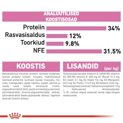 RC-FHN-KittenSterilised-CV9-1_005_ESTONIA-ESTONIAN