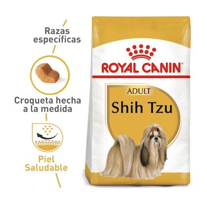 1 - SHIH TZU ADULT COLOMBIA