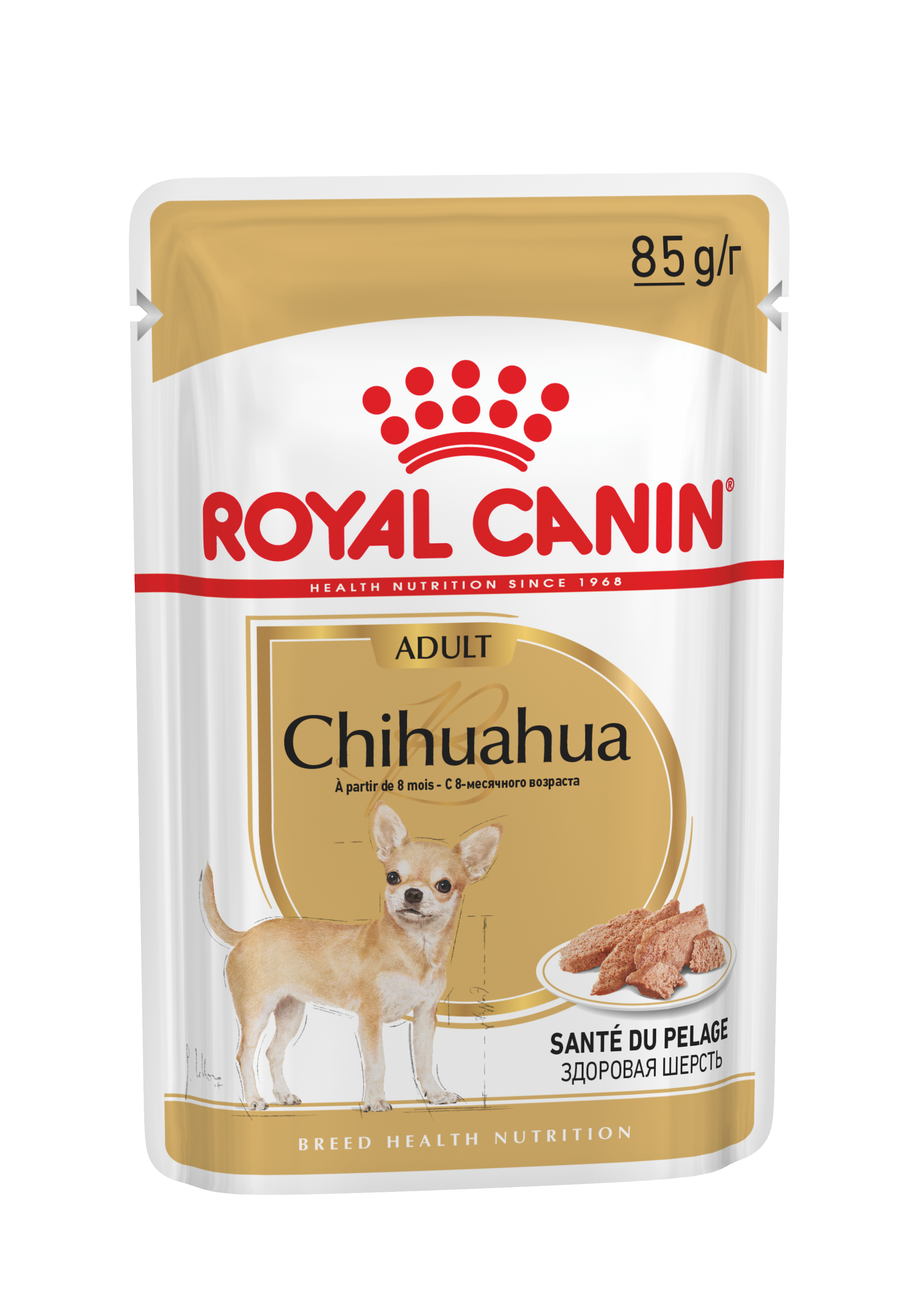 Chiot Chihuahua Aliment Sec Royal Canin