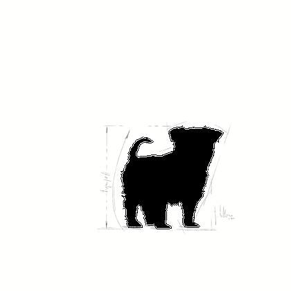 YORK-JU-ILLUSTR-FACING-BHN17