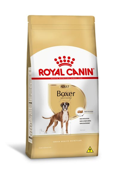 BOXER-adult