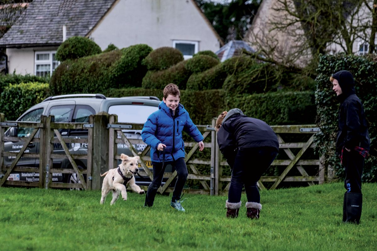 Further recall games on a leash: get someone to hold your dog whilst you move away, and then call the dog to you for a food reward.