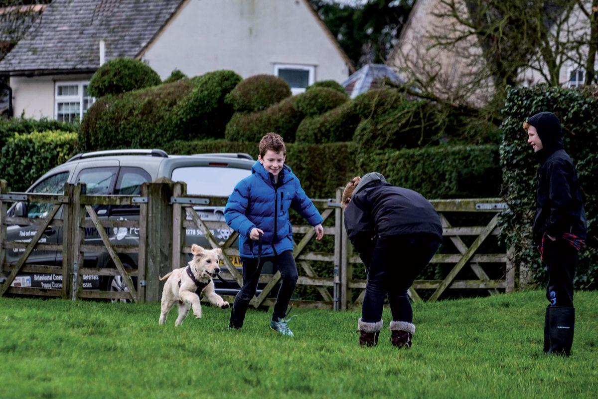 Juegos para enseñar al perro a acudir a la llamada: una persona sostiene al perro mientras el propietario se aleja, entonces le llama y le ofrece un premio.