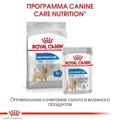 RC-CCN-LightMini-CV-Eretailkit-6_rus