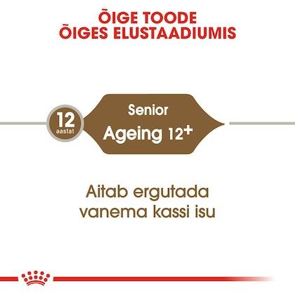 RC-FHN-Ageing12-CV-Eretailkit-1-et_EE