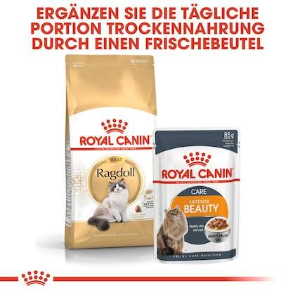 RC-FBN-Ragdoll-Kombination_DE