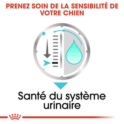 RC-CCN-Wet-Urinary-CV-Eretailkit-3-fr_FR-fr_FR